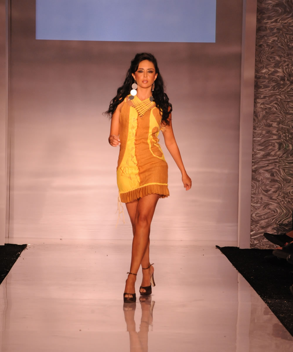 Franovik Designs We Are Designers With A Cause Go Green Eco Fashion Designers In Florida
